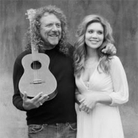 I Wish I Was a Singing Billionaire Like Robert Plant and Then I Wouldn't Have to do DIY